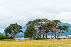 Nationalpark Landschafts-Killarneys stockfoto