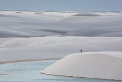 Nationalpark Lencois Maranhenses in Brasilien Stockbild