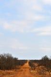 Nationalpark-, Limpopo- und Mpumalanga-Provinzen Kruger, Südafrika Lizenzfreie Stockfotos