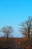Nationalpark-, Limpopo- und Mpumalanga-Provinzen Kruger, Südafrika Lizenzfreies Stockfoto