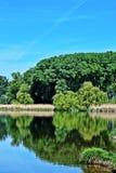 Nationalpark Lobau - Donauauen Arkivfoto
