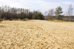 Nationalpark Maasduinen, die Niederlande Lizenzfreie Stockfotos