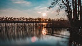 Nationalpark Mecklenburgische Seenplatte Lizenzfreies Stockfoto