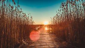 Nationalpark Mecklenburgische Seenplatte Lizenzfreie Stockbilder