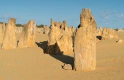 Nationalpark Nambung, West-Australien Lizenzfreie Stockfotos