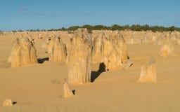 Nationalpark Nambung, West-Australien Lizenzfreie Stockbilder