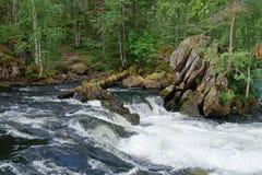 Lizenzfreie stockbilder rapids im taiga wald juuma finnland