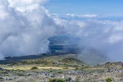 Nationalpark på den stora ön Royaltyfria Foton