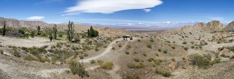Nationalpark Pampa-EL Leoncito und blauer Himmel des freien Raumes, Argentinien Lizenzfreies Stockbild