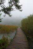 Nationalpark Plitvice Royaltyfria Foton