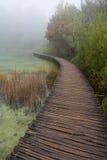 Nationalpark Plitvice Arkivfoton