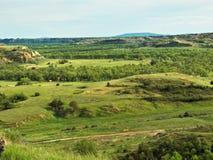 nationalpark roosevelt theodore royaltyfri foto