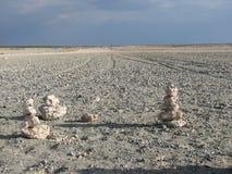 Nationalpark salt See Etosha stockfoto