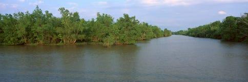Nationalpark See Fausse Pointe, Louisiana stockbilder