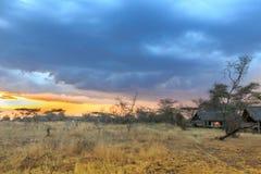 Nationalpark Serengeti in Nordwest-Tansania lizenzfreies stockbild