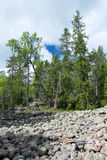 Nationalpark Skuleskogen, Hoega Kusten, Schweden Stockfotografie