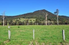 Nationalpark Springbrook - Queensland Australien lizenzfreie stockfotografie