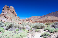 Nationalpark Teide Royaltyfria Foton