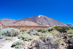 Nationalpark Teide Arkivbild