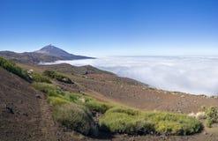 Nationalpark Teneriffa mit Teide Stockfotografie