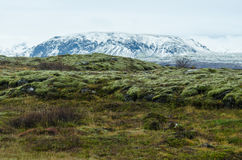 Nationalpark Thingvellir lizenzfreie stockfotografie