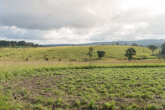 Nationalpark Thung Salaeng Luang, Thailand lizenzfreie stockfotografie