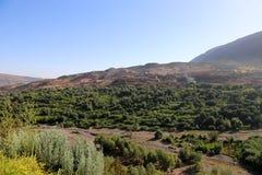 Nationalpark Toubkal i Marocko Royaltyfria Foton