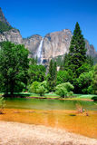 nationalpark USA yosemite Royaltyfria Bilder