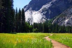 nationalpark USA yosemite Arkivbild