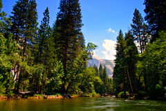 nationalpark USA yosemite royaltyfri foto