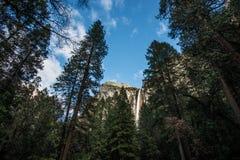 nationalpark USA yosemite för bridalveilKalifornien fall Royaltyfri Bild
