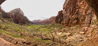 Nationalpark Utah USA Zion Lizenzfreies Stockbild