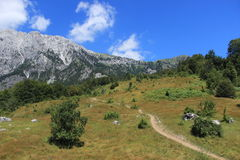 Nationalpark Valbona in Albanien Lizenzfreie Stockfotografie