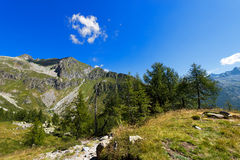 Nationalpark von Adamello Brenta - Italien Lizenzfreies Stockfoto