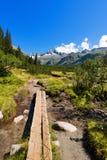 Nationalpark von Adamello Brenta - Italien Lizenzfreie Stockfotos