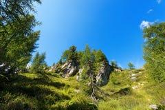 Nationalpark von Adamello Brenta - Italien Stockfotografie