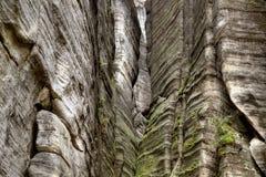Nationalpark von Adrspach-Teplicefelsen Felsen-Stadt Lizenzfreie Stockbilder