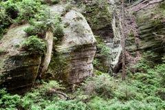 Nationalpark von Adrspach-Teplicefelsen Tschechische Republik Stockfoto