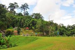 Nationalpark von Thailand Stockbilder