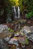 Nationalpark-Wasserfall Kasten-Klotz-Fälle Lamington Stockbild