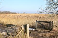 Nationalpark Weerribben-Wieden in den Niederlanden Stockbilder