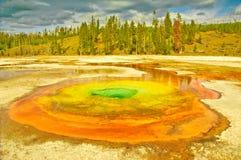 nationalpark yellowstone arkivfoton