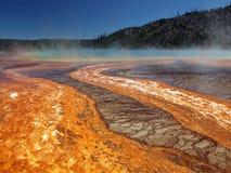 nationalpark yellowstone Royaltyfri Bild
