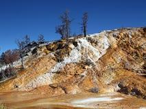 nationalpark yellowstone Arkivbild
