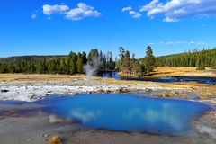nationalpark yellowstone Royaltyfri Bild