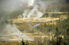 nationalpark yellowstone Royaltyfri Foto
