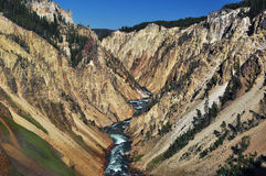 nationalpark yellowstone Royaltyfria Bilder