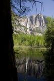 nationalpark yosemite royaltyfri foto