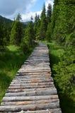 nationalparkbana yosemite Fotografering för Bildbyråer