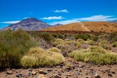 Nationalparken del Teide, sikt av magiskt parkerar arkivbild